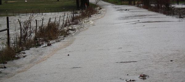 DST Road Flood