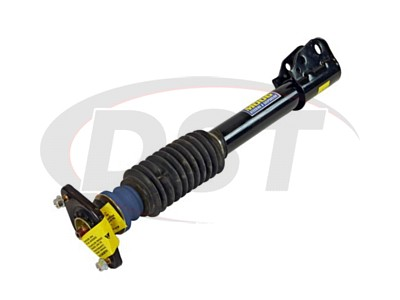 Rear Strut and Mounting Assembly - FWD