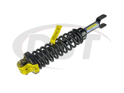 Rear Coil Spring and Strut Assembly
