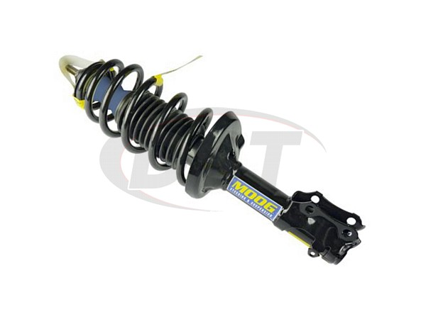 Front Coil Spring and Strut Assembly - Gas Models