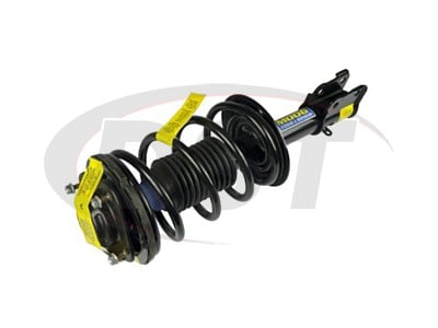 Front Coil Spring and Strut Assembly
