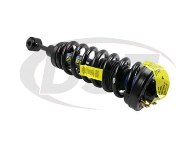 Front Coil Spring and Strut Assembly - 4WD - EXC. 8200GVW