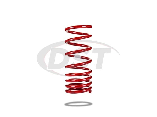 Rear Lowering Coil Spring